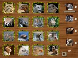 Memory Games with Nuremberg ZOO
